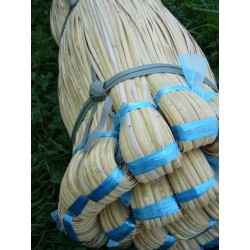 Binder cane from rattan skin (2,5mm wide)